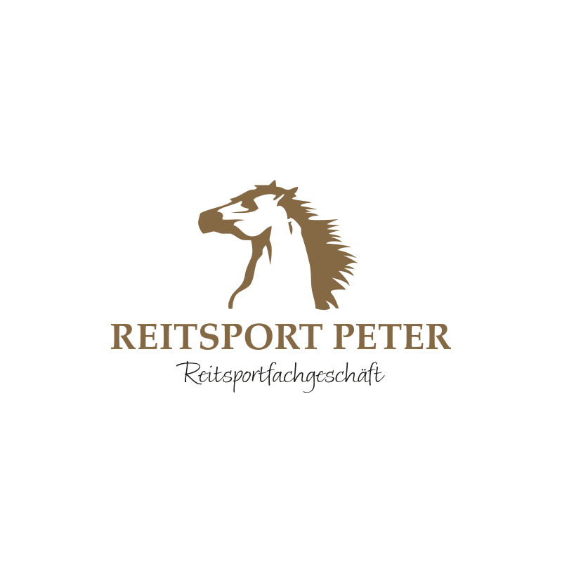 Logo-Design / Corporate Design RSP